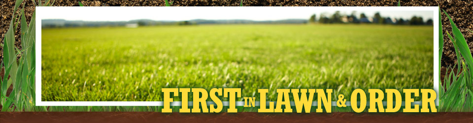 Contact Us, first in lawn & order - grass
